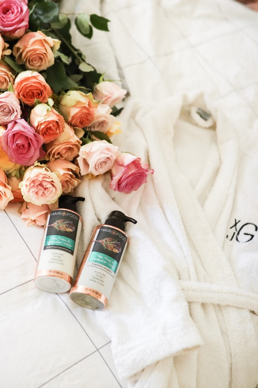 the best clean shampoo and conditioners of 2019 and 5 purifying house plants to transform your being