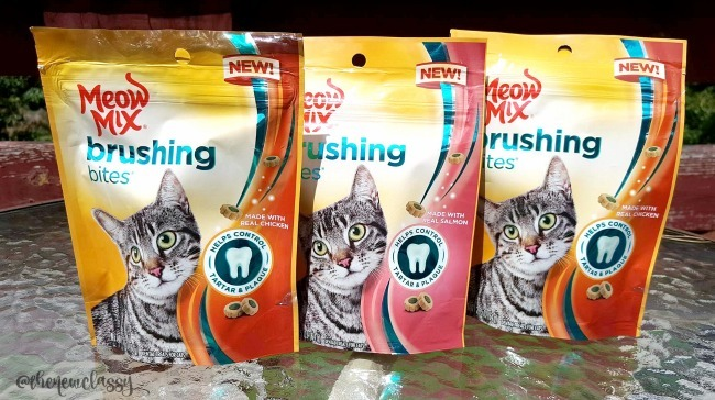 Care For Your Cat's Teeth With Meow Mix Brushing Bites #sponsored