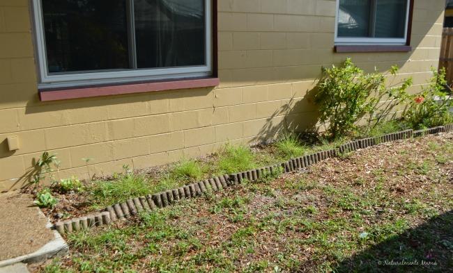 Creando un jardín que invite a disfrutar del aire libre