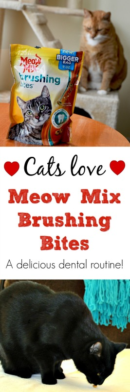 Meow Mix Brushing Bites at Walmart - A Delicious Dental Routine