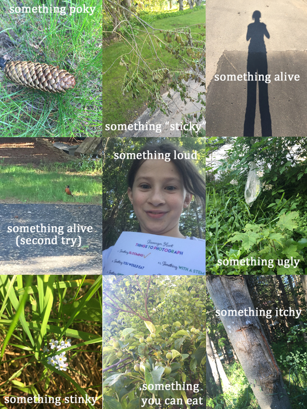 A photographic nature scavenger hunt equals exercise, fun, and creativity for your kids this summer