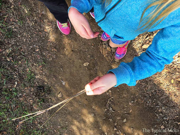 Free activities to do with your kids