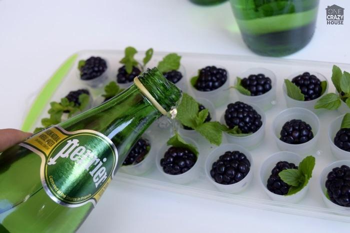 blackberry-mojito-cubes4