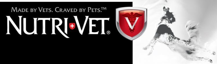 Freshen Your Pets Breath with Nutri-Vet Breath & Tartar Biscuits for Dogs #Giveaway #NutriVet 4