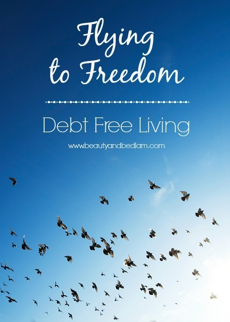 Flying to Freedom: Climbing out of Debt