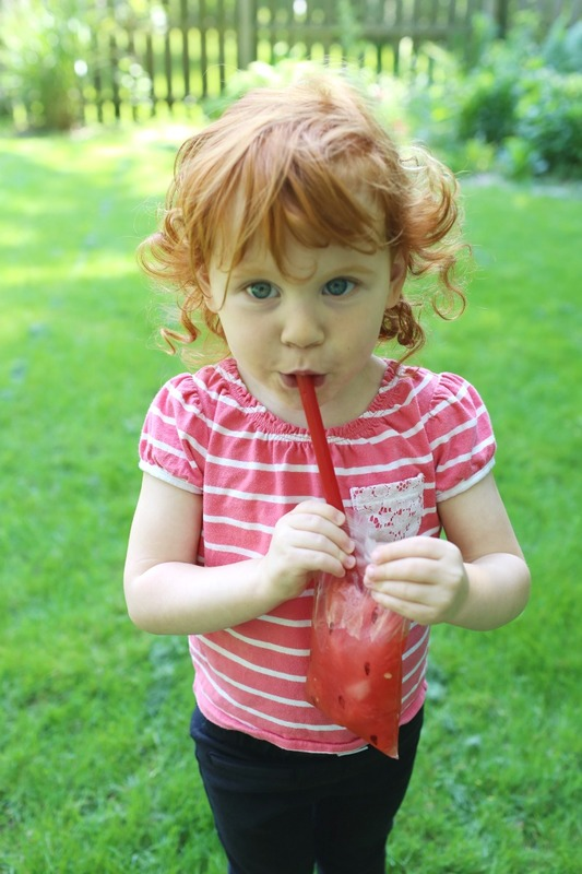 Watermelon Slushie Recipe for Summer