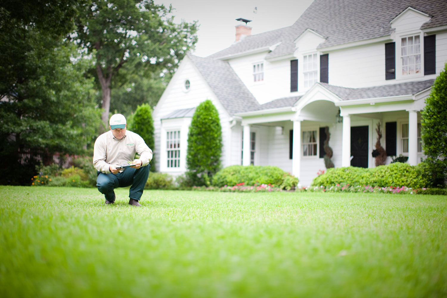 How to get lush grass and maintain the perfect lawn for Landscaping services