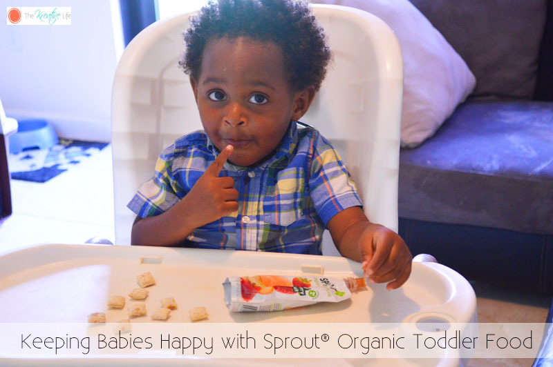 Keeping Babies Happy with Sprout® Organic Toddler Food- #SproutFoods #ad