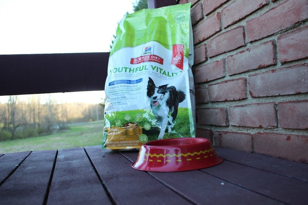 I switched my dog's food to the NEW Hill's Science Diet Youthful Vitality specially formulated for dogs over 7 years of age.