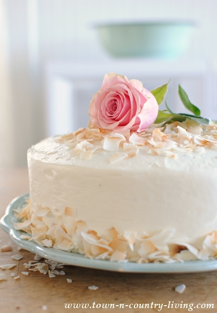 Elegant Spring Cake. A chocolate layer cake with vanilla frosting, toasted coconut, and a pretty rose.