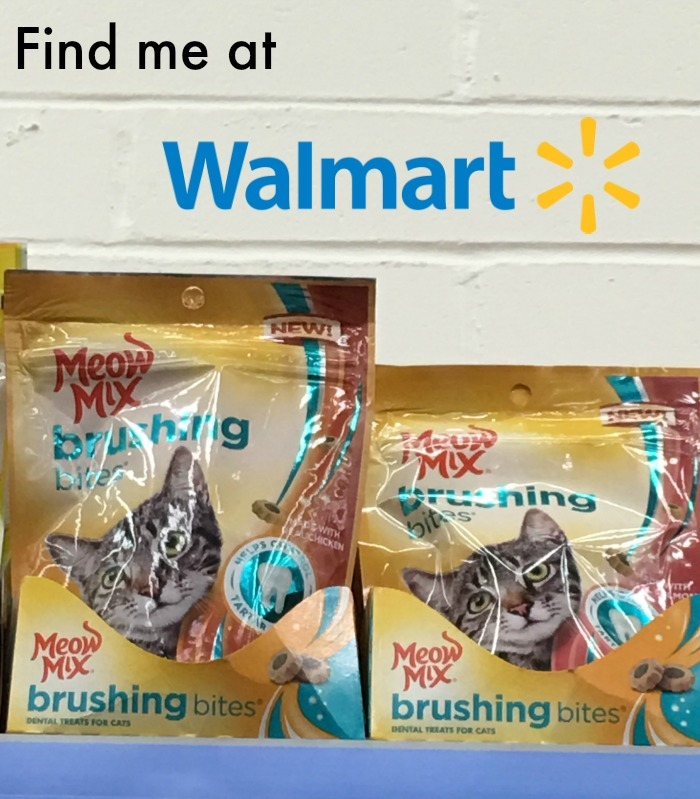 Want to protect your cats teeth from tartar & decay? Learn how you can while spoiling your cat with Meow Mix Brushing Bites Cat Treats here!